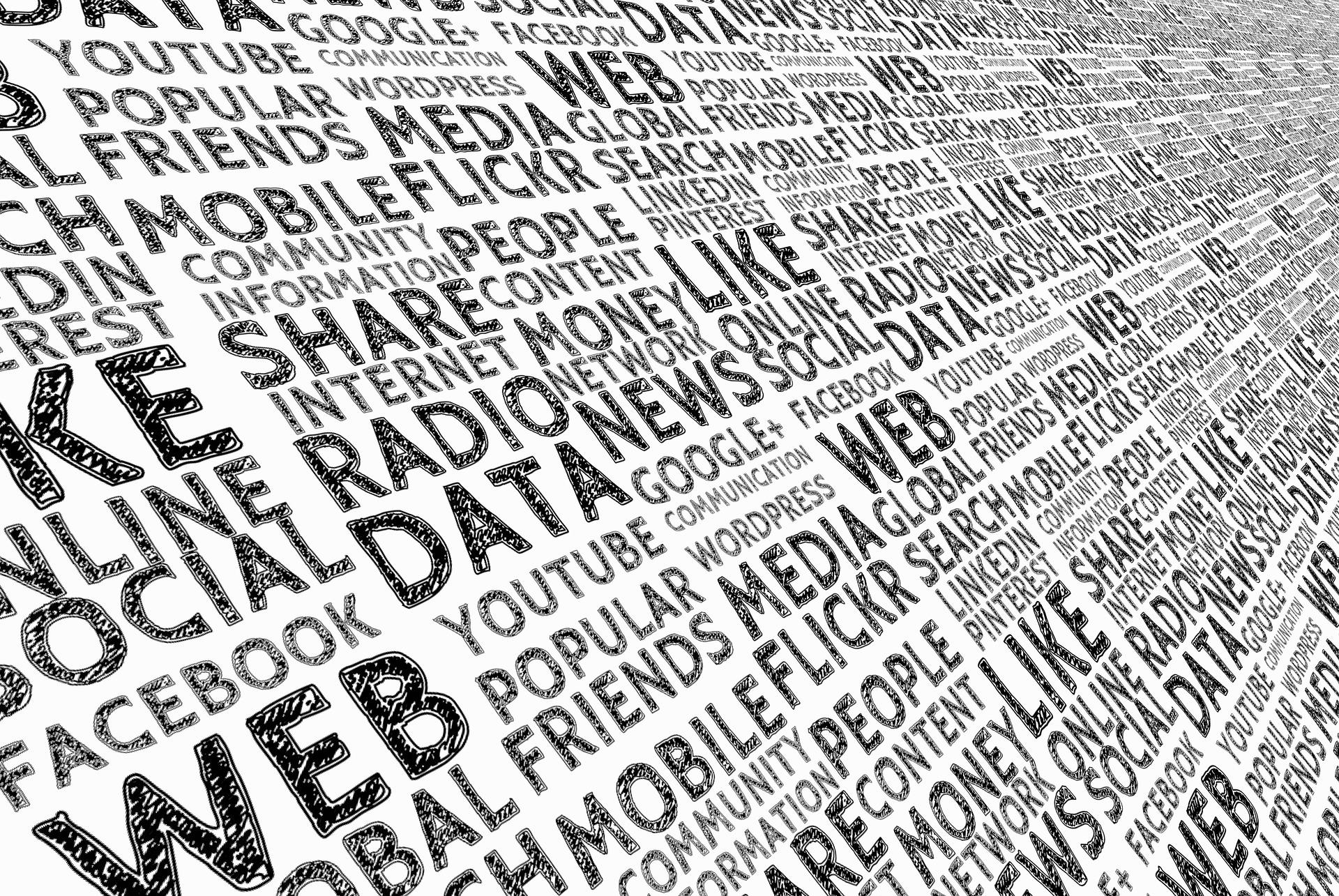 Bruger du internettet til andet end de sociale medier?